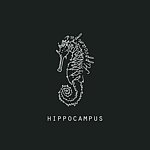 From Taiwan - hippocampus-pick