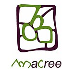 Designer Brands - macree