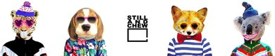 still-and-chew