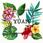 Designer Brands - Headband Design YUAN